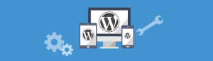 Sign up for WordPress website maintenance