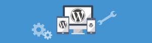 Sign up for WordPress website maintenance